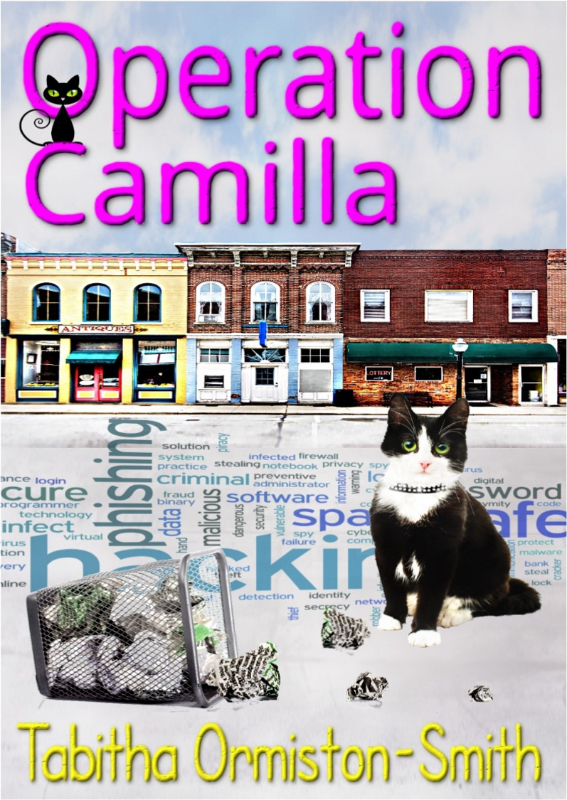 operation-camilla-bk-2-cover-ebook-2april2016-2500
