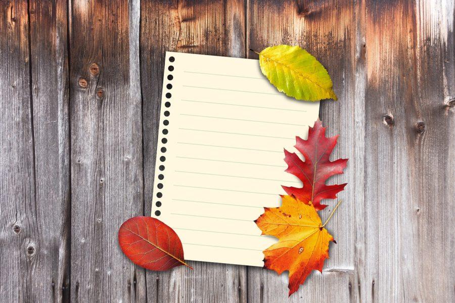 autumn-1649207_1280